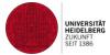 Universität Heidelberg, Dezernat Internationale Beziehungen